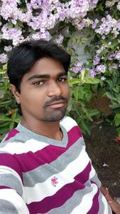 See Sai's Profile